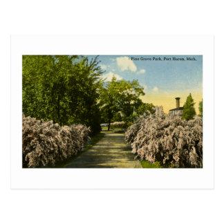 Cartão Postal Vintage de Huron Michigan do porto do parque do
