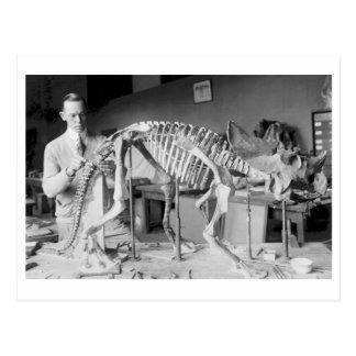 Cartão Postal Vintage do dinossauro do bebê do cientista da
