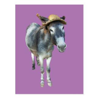 Cartão Postal Violeta o asno no chapéu de palha com flores