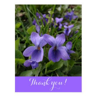 Cartão Postal violetas