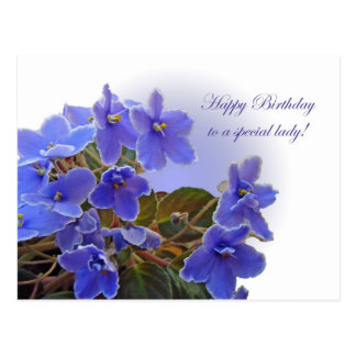 Cartão Postal Violetas africanas azuis do aniversário