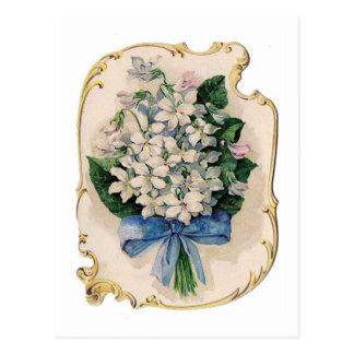 Cartão Postal Violetas brancas do vintage