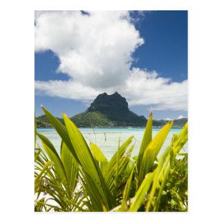 Cartão Postal Visita à ilha pequena do piquenique na lagoa em