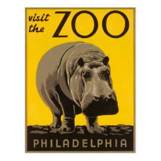 Cartão Postal Visite o hipopótamo de Philadelphfia do jardim