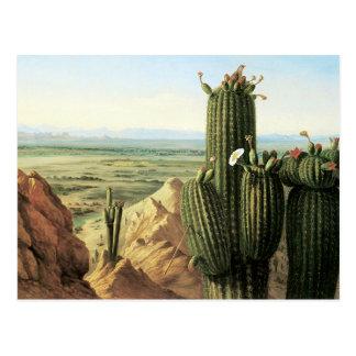 Cartão Postal Vista da montanha de Maricopa perto do rio Gila