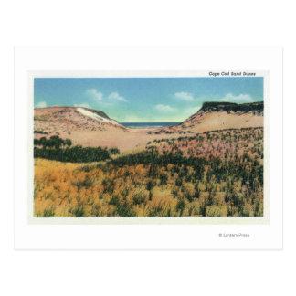 Cartão Postal Vista das dunas de areia 2 de Cape Cod
