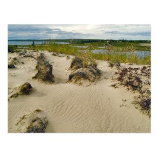 Cartão Postal Vista de uma cume arenosa dos lagos e das colinas