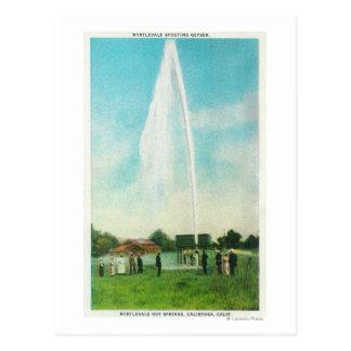 Cartão Postal Vista do geyser de Myrtledale no Hot Springs