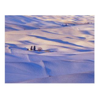 Cartão Postal Vista do montículo de Steptoe de Rolling Hills