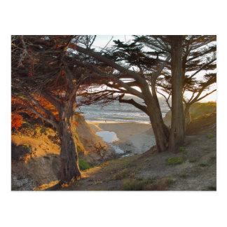 Cartão Postal Vista para o mar
