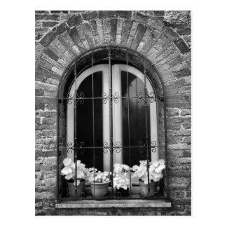 Cartão Postal Vista preta & branca de potes da janela e de flor