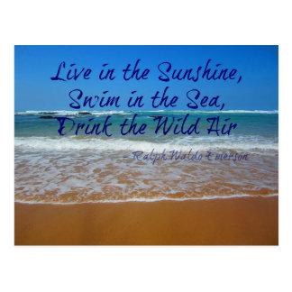 Cartão Postal Viva na luz do sol, na natação e na bebida
