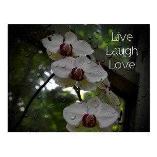 Cartão Postal Vive a Amor-Orquídea do riso