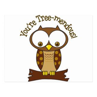 Cartão Postal Você é Árvore-mendous