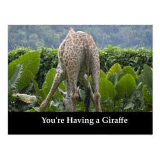 Cartão Postal Você está tendo um girafa!