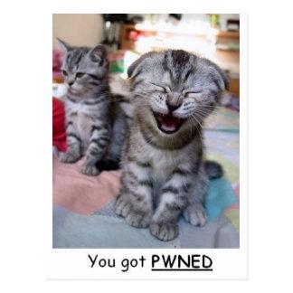 Cartão Postal Você obteve PWNED