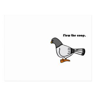 Cartão Postal Voou os desenhos animados cinzentos do pombo da