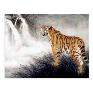 Cartão Postal Voz do tigre