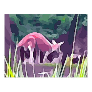Cartão Postal Wallaby
