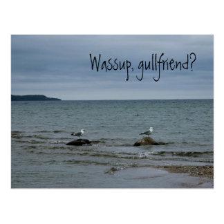 Cartão Postal Wassup, gullfriend?
