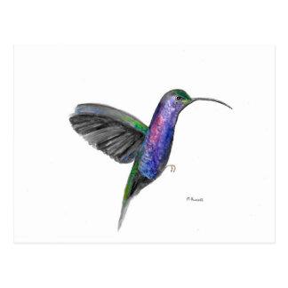 Cartão Postal Watercolour roxo do colibri