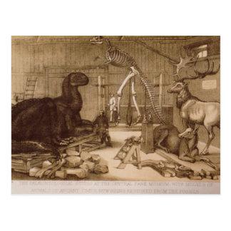Cartão Postal Waterhouse Hawkins de Benjamin do estúdio do