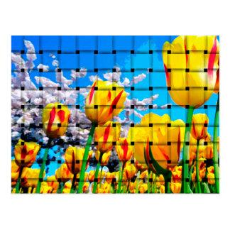 Cartão Postal Weave amarelo da tulipa