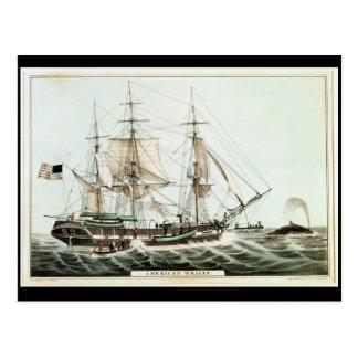 Cartão Postal Whaler americano, gravado pelo Currier de