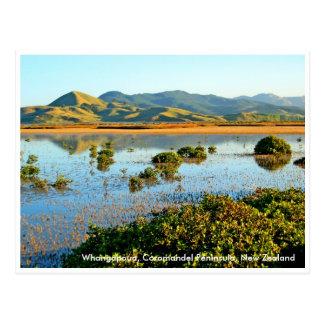 Cartão Postal Whangapoua, península de Coromandel, Ne…