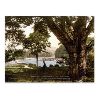 Cartão Postal Wicklow Ireland, poema de Thomas Moore Avoca