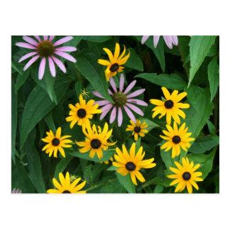 Cartão Postal Wildflowers