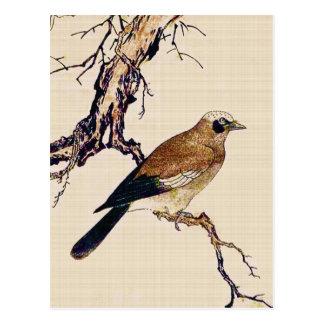 Cartão Postal Woodcut japonês de um passarinho, de um Brown e de