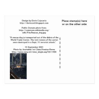 Cartão Postal WTC6 imagem 2 na parte traseira não-lustrosa do