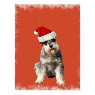 Cartão Postal Yorkshire terrier com chapéu