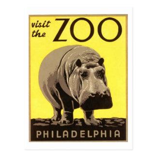 Cartão Postal Z00 - Hipopótamo