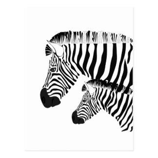 Cartão Postal Zebra e bebê