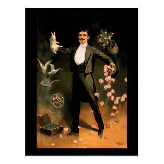 Cartão Postal Zig de Zan que executa com os coelhos e os rosas