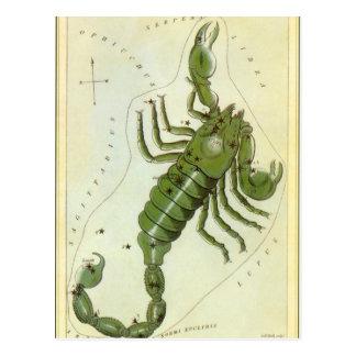 Cartão Postal Zodíaco do vintage, constelação da Escorpião da