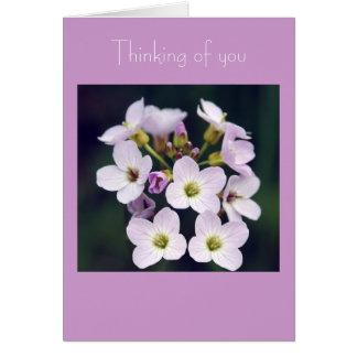 Cartão Posy do primavera