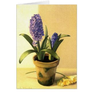 Cartão Pote do jacinto