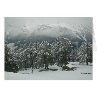Cartão Prado da neve