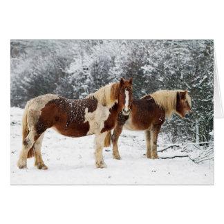 Cartão Prado do inverno