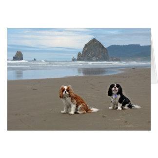 Cartão Praia do canhão dos Cavaliers @, Oregon
