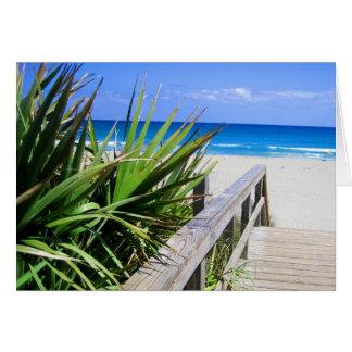 Cartão Praia Florida de Juno