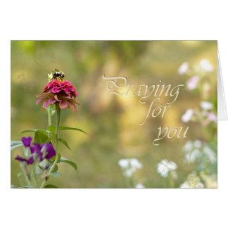 Cartão Praying para você