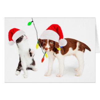 Cartão Prejuízo do animal de estimação do feriado
