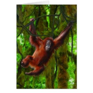 Cartão Presente da arte do orangotango do bebê & do