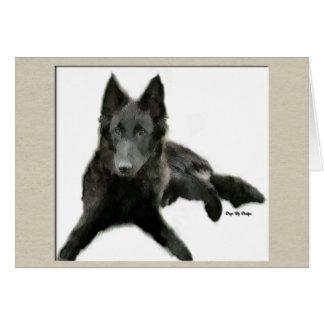 Cartão Presentes belgas do Sheepdog