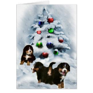 Cartão Presentes do Natal do cão de montanha de Bernese