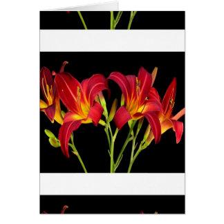 Cartão Presentes sensuais romances da flor exótica dos